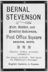 Bernal Stevenson advert